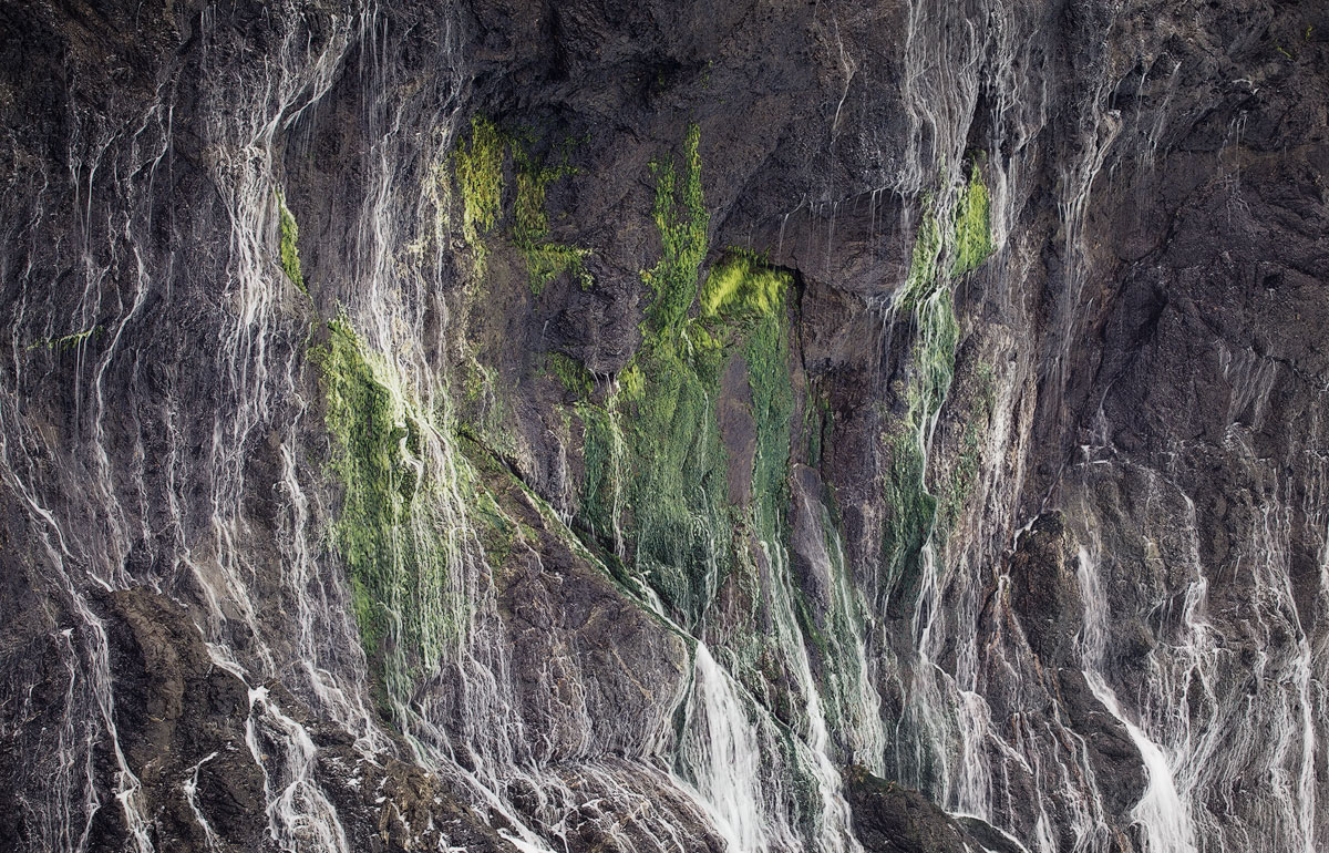 Streams of water running down a mossy cliff side.